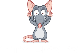city pest control brooklyn new york