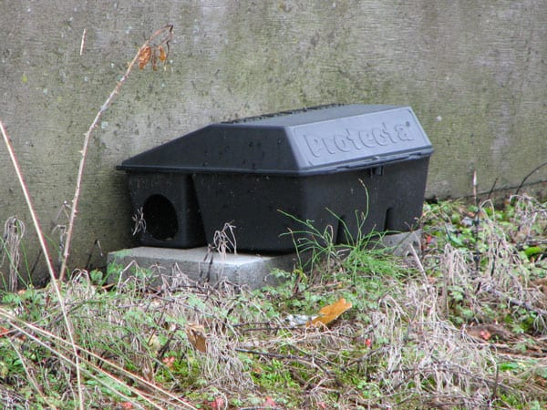 rat bait boxes