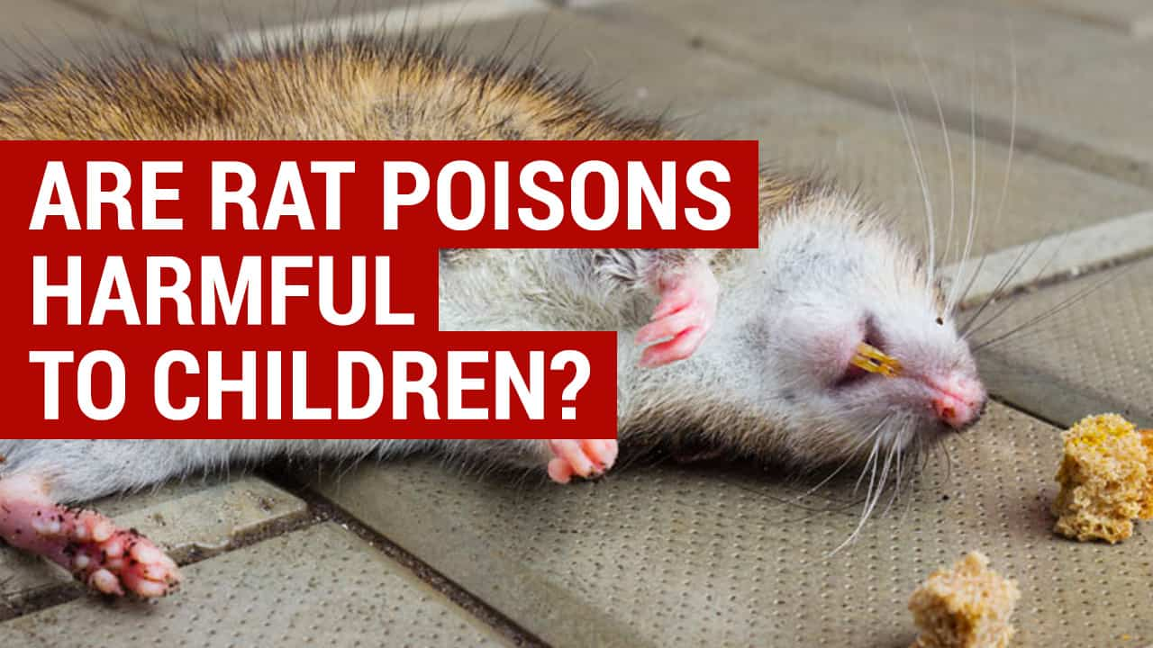 are rate poisons harmful to children