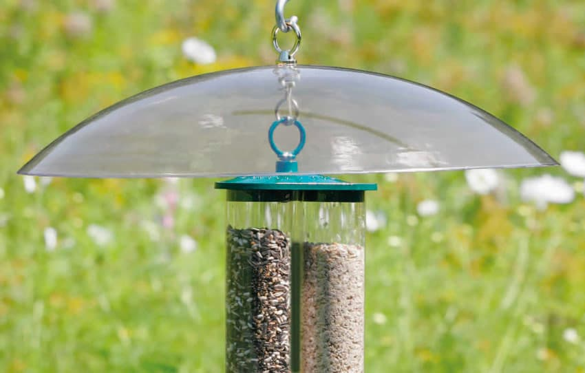 9f62f3fb78a6 Stop rats and squirrels eating your birdseed | Rodent proof birdfeeders