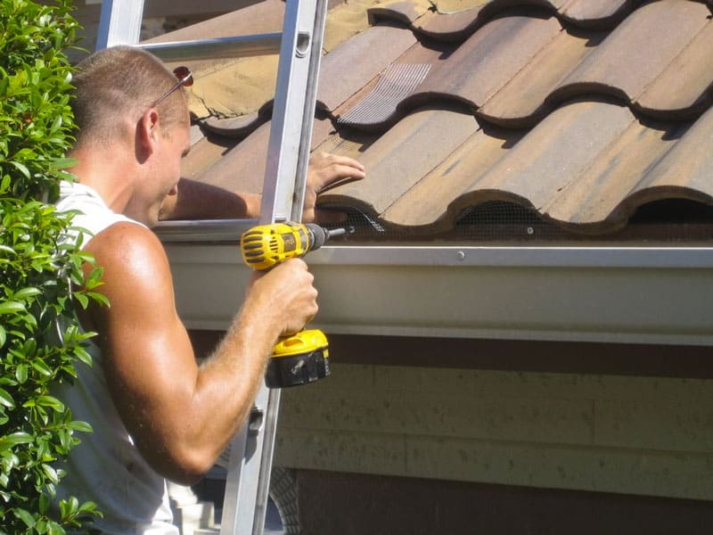 sealing your roof tiles to stop rats and rodents