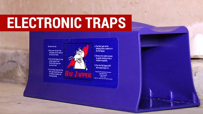 the best electronic rat traps to buy