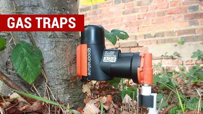 best gas rat traps