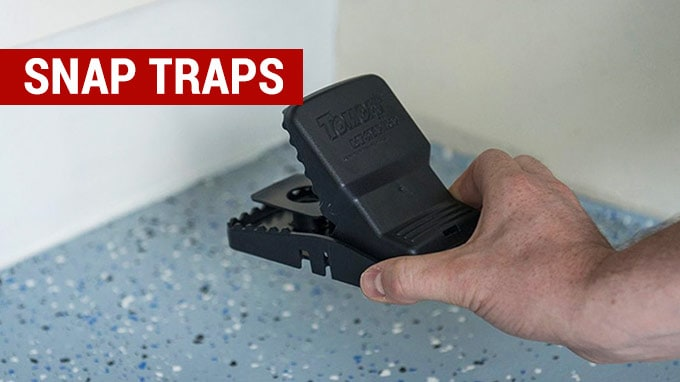 best snap rat traps to buy