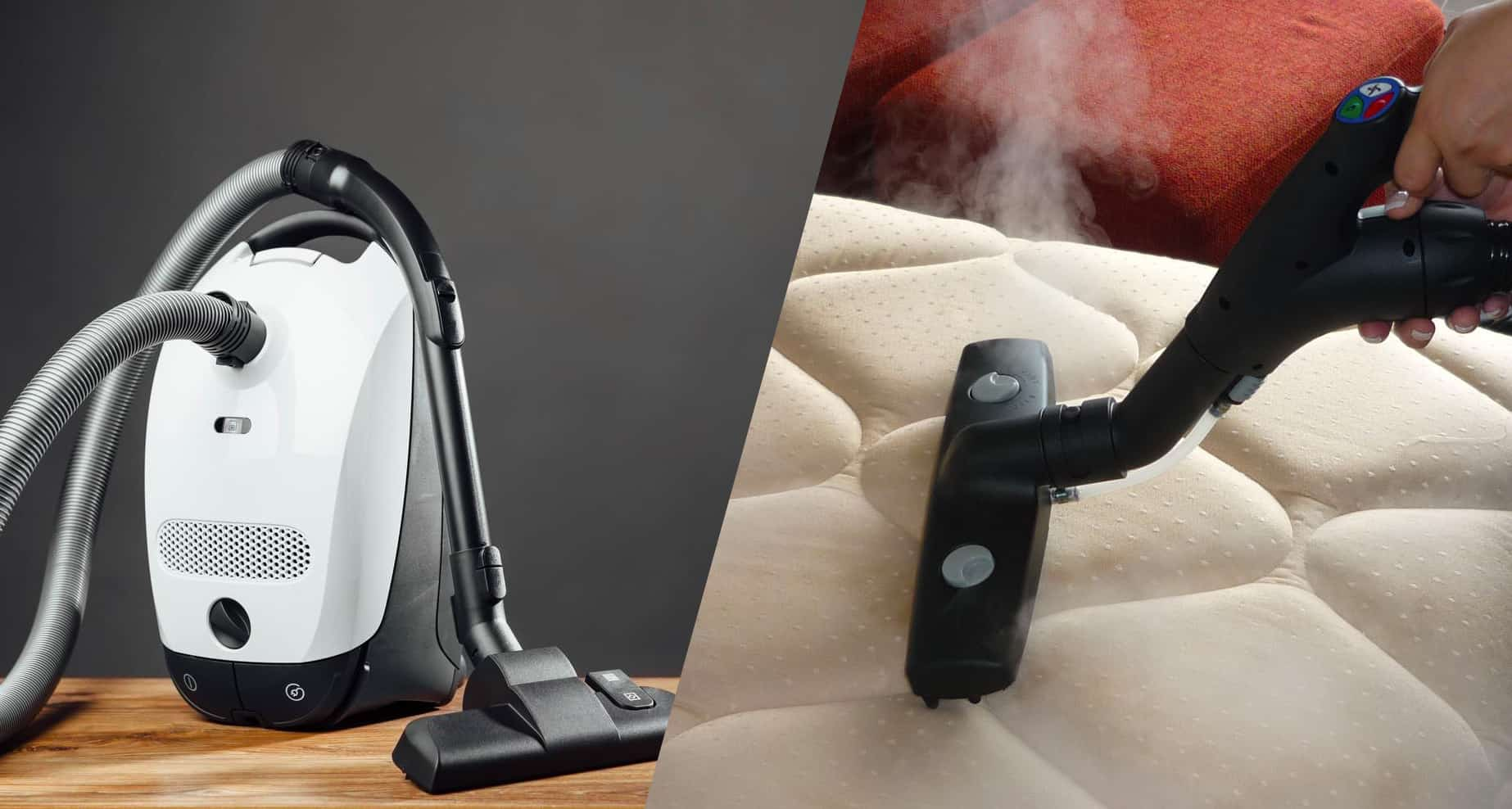 best bed bug steamers and vacuums