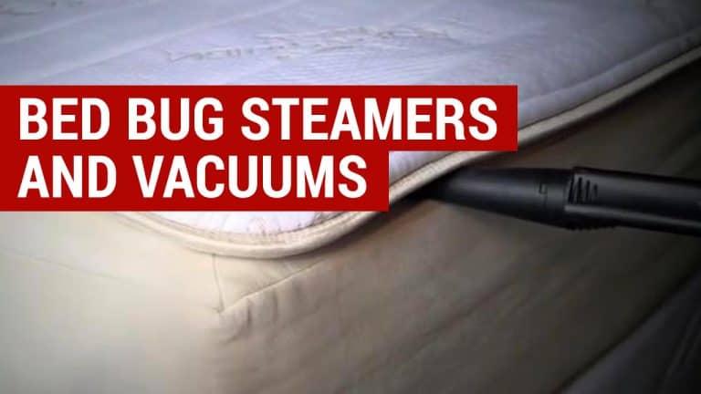 best bed bug steamers