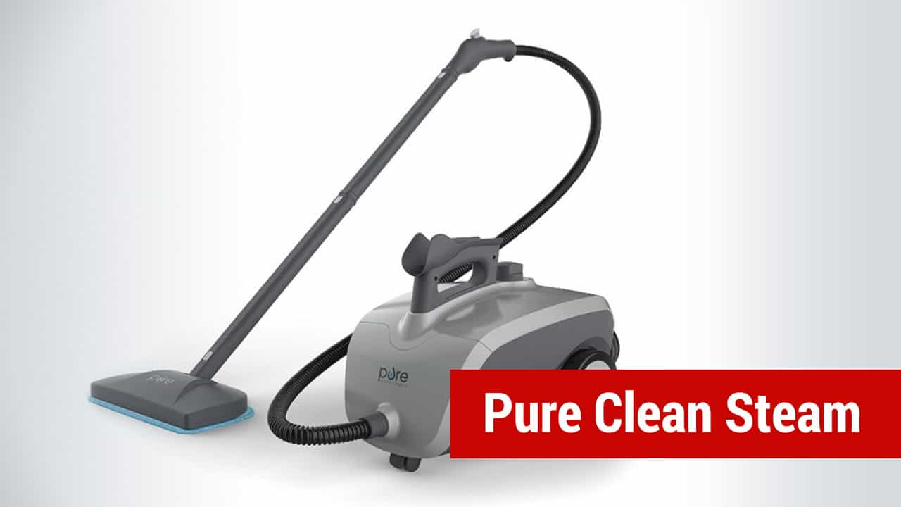 best steamer for bed bugs - pure clean