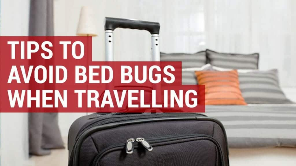 7 top tips on avoiding bed bugs when travelling