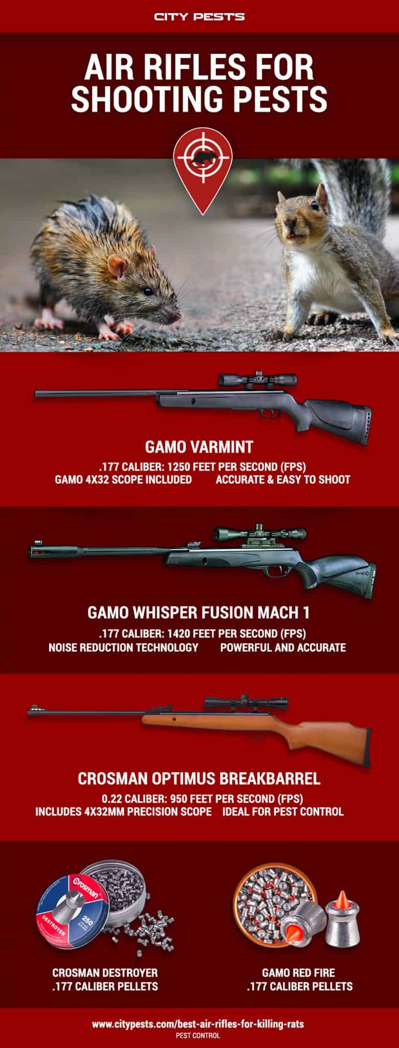 best air rifles for pest control infographic