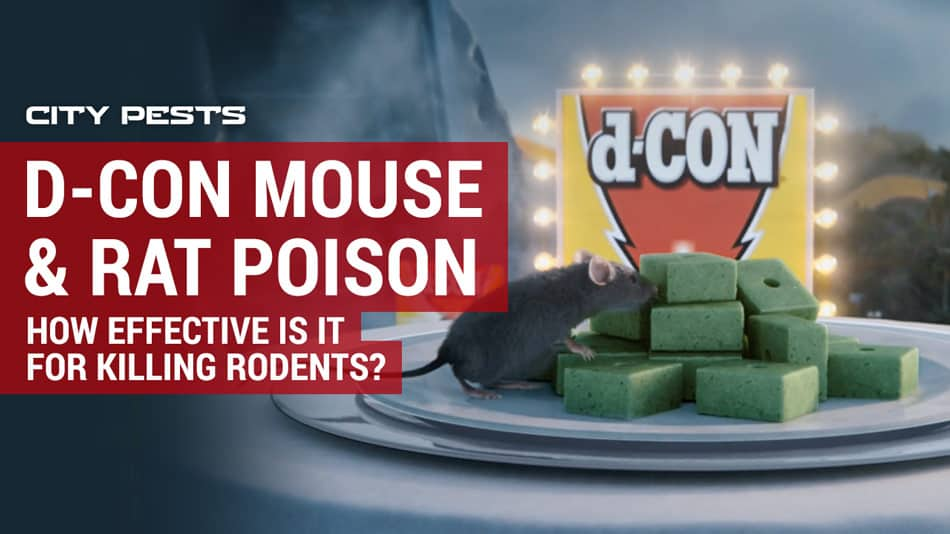 dcon mouse and rat poison review