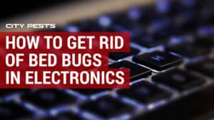 how to get rid of bed bugs in electronics