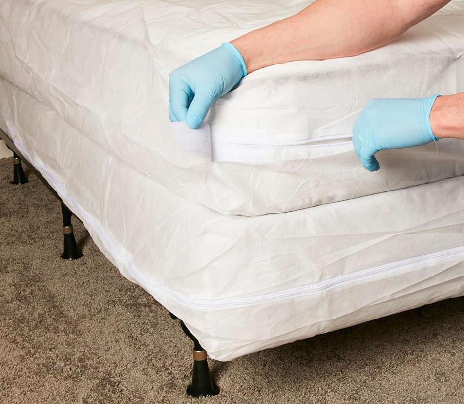 mattress encasements to kill bed bugs