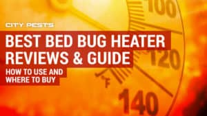 best bed bug heater reviews
