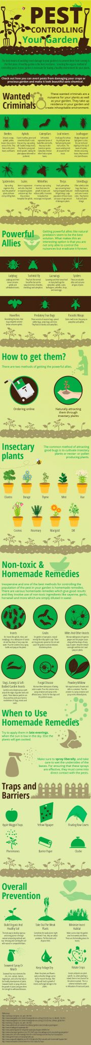 pest control for gardens inforgraphic
