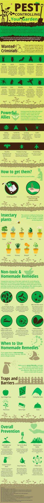 pest control for gardens inforgraphic