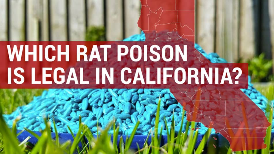 Which types of rat poison are illegal in the State of California