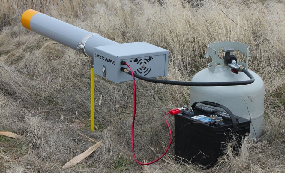 sonic sentinel bird propane cannon