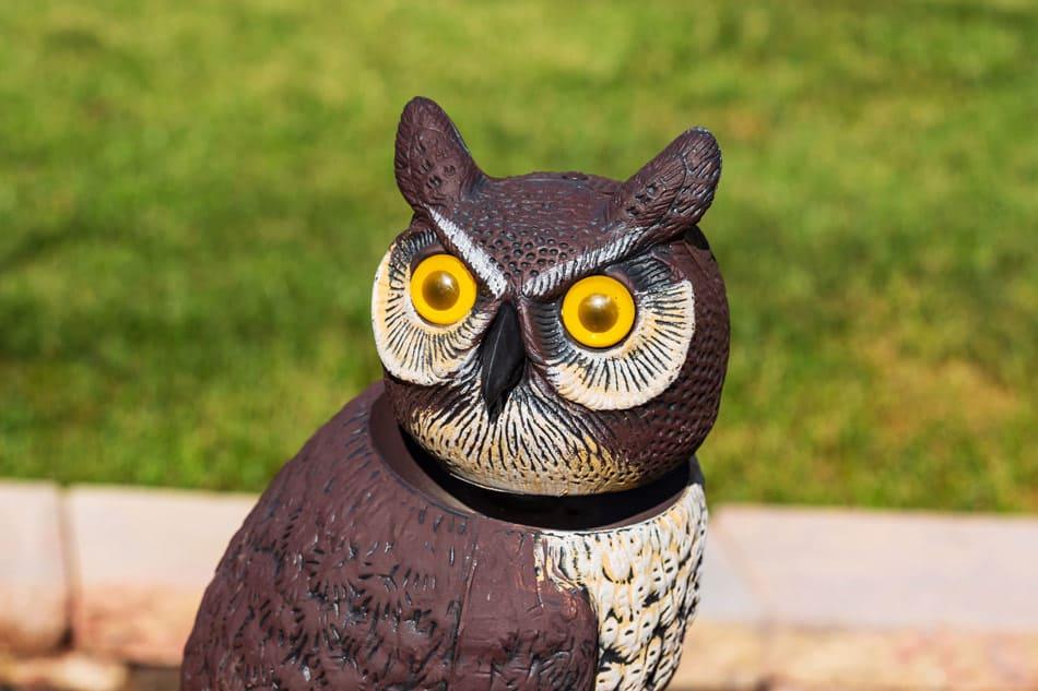 best owl decoys bird deterrents