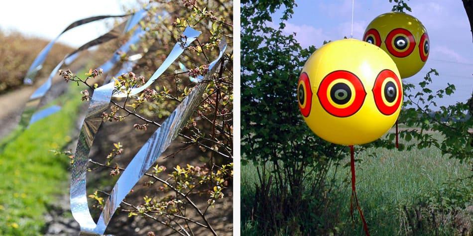 decoys to scare birds