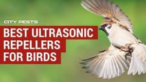 best ultrasonic bird repellers