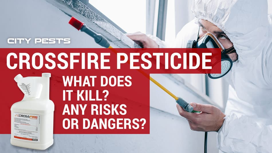 crossfire pesticide for bed bugs
