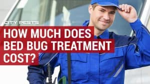 bed bug treatment cost for house or apartment