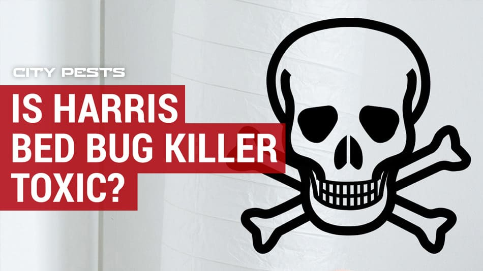 is harris bed bug killer toxic