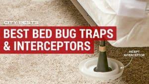 best bed bug traps and interceptors