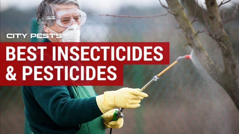 Best Insecticides & Pesticides Reviews