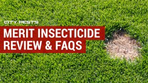 merit insecticide reviews
