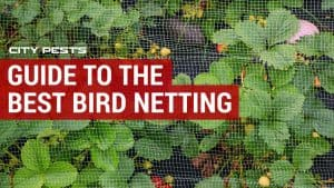 best bird netting reviews