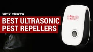 best ultrasonic pest repeller reviews