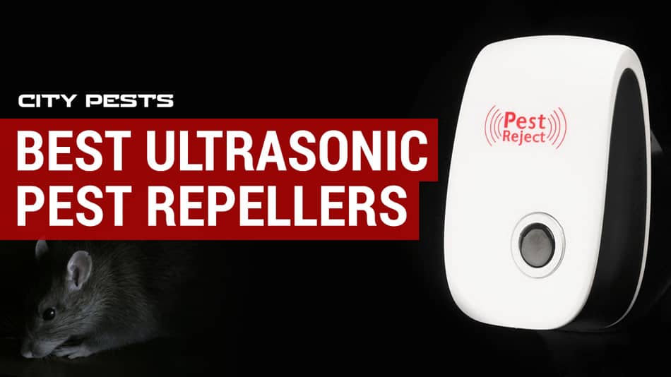 Best Ultrasonic Pest Repellers | Reviews & Buyers Guide