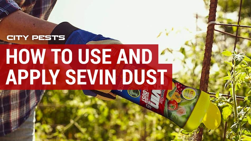 how to use sevin dust