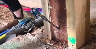 applying termite killer spray to wall