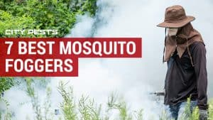 7 best mosquito foggers reviews