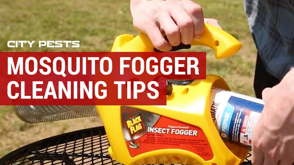 mosquito fogger cleaning and maintenance tips