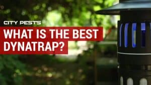 best dynatrap for mosquitoes reviews