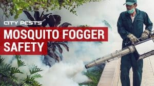 are mosquito foggers safe
