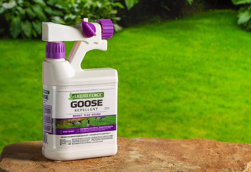 liquid fence goose repellent spray