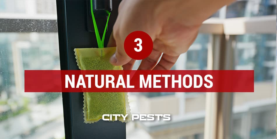 natural methods to get rid of mosquitoes