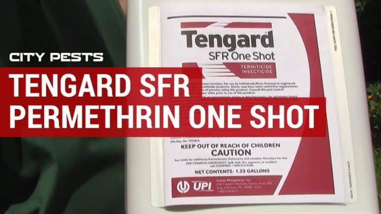 tengard sfr permethrin one shot review