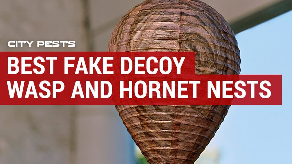 best fake wasp and hornet nests