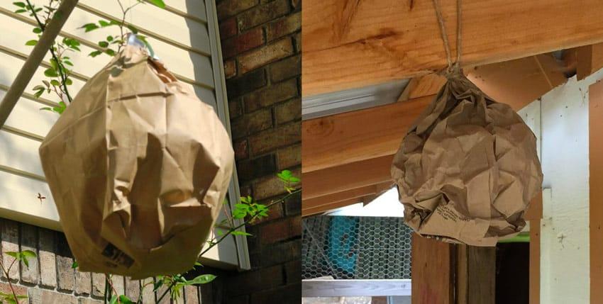 paper bag fake wasp nests