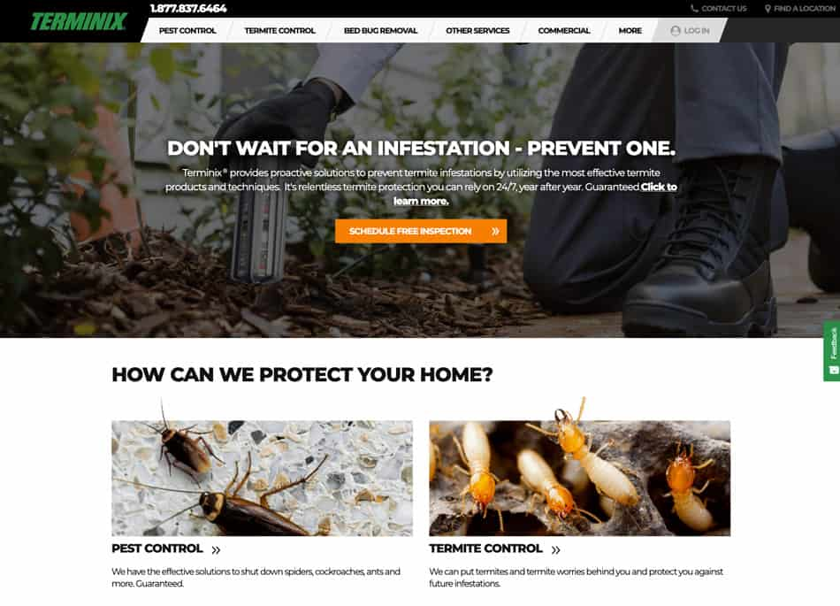 what is terminix pest control
