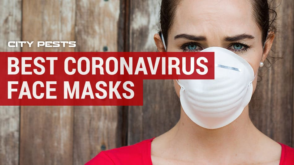 Best Coronavirus Face Masks