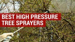 best high pressure tree sprayer