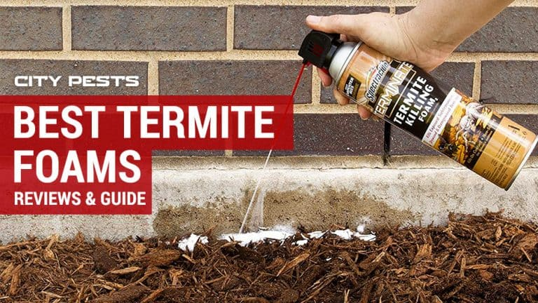best termite foams reviews