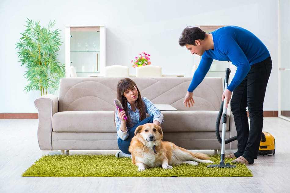 are flea vacuums safe to use around pets