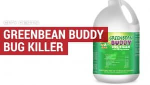 greenbean buddy bug killer§